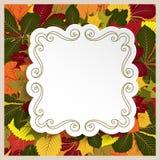 Marco cuadrado en fondo de las hojas de otoño libre illustration