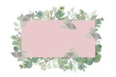 Marco cuadrado pintado a mano de la acuarela con las hojas y las ramas del eucalipto del dólar de plata con el fondo rosado stock de ilustración