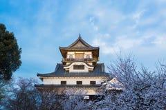 Marco da construção histórica do castelo de Inuyama na mola com beautif Imagem de Stock