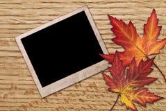 Marco de Autumn Leaves y de la foto Fotos de archivo libres de regalías