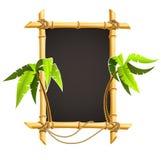 Marco de bambú con las palmas tropicales Fotos de archivo