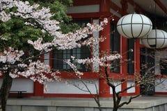 Marco de Japão fotografia de stock