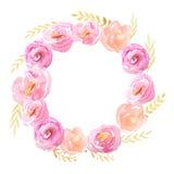 Marco de la acuarela con las flores y las hojas Fotografía de archivo libre de regalías