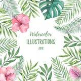 Marco de la acuarela con las hojas de palma y las flores verdes Su tropical Foto de archivo libre de regalías