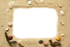 Marco de la arena y de los seashells Foto de archivo