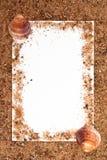 Marco de la arena y del shell Imagen de archivo libre de regalías
