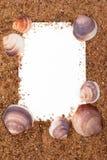Marco de la arena y del shell Fotos de archivo libres de regalías
