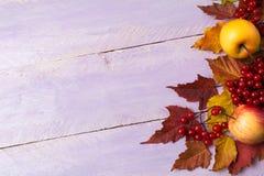 Marco de la caída de las manzanas, bayas, calabazas en la tabla de la lila, balneario de la copia imagen de archivo
