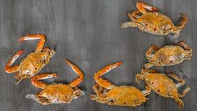 Marco de la comida con crustáceo foto de archivo libre de regalías