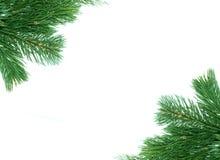 Marco de la decoración del árbol de navidad Imagenes de archivo