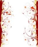 Marco de la flor Imagen de archivo