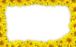 Marco de la flor Imagenes de archivo