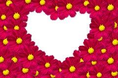 Marco de la flor de la dimensión de una variable del corazón Fotografía de archivo libre de regalías