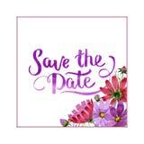 Marco de la flor del kosmeya del Wildflower en un estilo de la acuarela aislado Imágenes de archivo libres de regalías