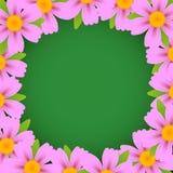 Marco de la flor del vector Foto de archivo