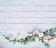 Marco de la flor en fondo de madera Imagen de archivo libre de regalías