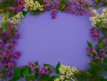 Marco de la flor para las fotos en las cubiertas del ?lbum y del diario fotografía de archivo libre de regalías
