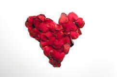 Marco de la forma del corazón de la flor de Rose Fotografía de archivo