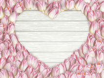 Marco de la forma del corazón de los tulipanes EPS 10 Foto de archivo libre de regalías
