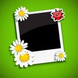Marco de la foto con las flores Fotografía de archivo