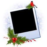 Marco de la foto de la Navidad con la baya del acebo Imágenes de archivo libres de regalías