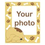 Marco de la foto para el bebé o el animal doméstico Imagen de archivo