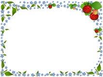 Marco de la fresa Foto de archivo libre de regalías