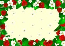 Marco de la fresa de los rojos. Imágenes de archivo libres de regalías