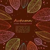 Marco de la frontera de las hojas de otoño coloridas Foto de archivo