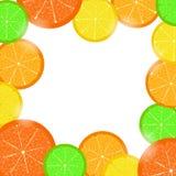 Marco de la fruta cítrica Imagen de archivo libre de regalías