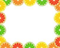 Marco de la fruta cítrica Fotos de archivo