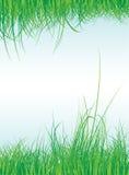 Marco de la hierba Stock de ilustración