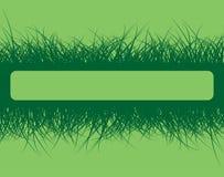 Marco de la hierba Libre Illustration