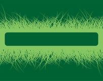 Marco de la hierba Ilustración del Vector