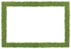 Marco de la hierba Foto de archivo libre de regalías