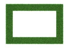 Marco de la hierba en el fondo blanco Fotografía de archivo