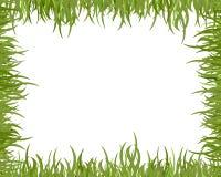 Marco de la hierba salvaje Imágenes de archivo libres de regalías