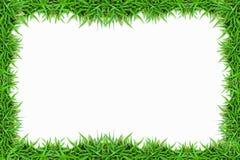 Marco de la hierba verde en blanco Imagen de archivo
