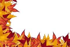 Marco de la hoja del otoño Imágenes de archivo libres de regalías