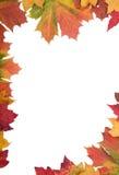 Marco de la hoja del otoño Fotografía de archivo