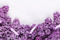 Marco de la lila Imagen de archivo libre de regalías