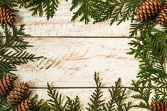 Marco de la luz de la Navidad adornado con las ramas del abeto y el cono del pino Imágenes de archivo libres de regalías