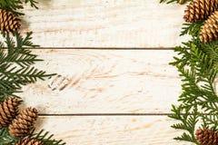 Marco de la luz de la Navidad adornado con las ramas del abeto y el cono del pino Fotografía de archivo