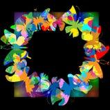 marco de la mariposa Imagenes de archivo