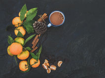 Marco de la Navidad o del Año Nuevo Mandarines frescos con Foto de archivo libre de regalías