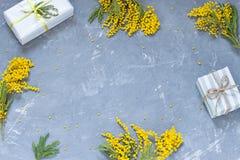 Marco de la opinión superior de las flores de la mimosa con los regalos Endecha del plano del concepto de la primavera imágenes de archivo libres de regalías