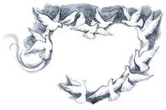 Marco de la paloma ilustración del vector