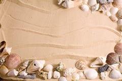 Marco de la playa del Seashell Fotos de archivo libres de regalías