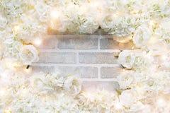 Marco de la rosa del blanco Foto de archivo libre de regalías