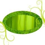 Marco de la seda de la hierba verde Fotografía de archivo